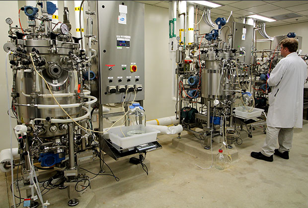 Fermentation tanks in Vaccine R&D Early Bioprocess Development Laboratory