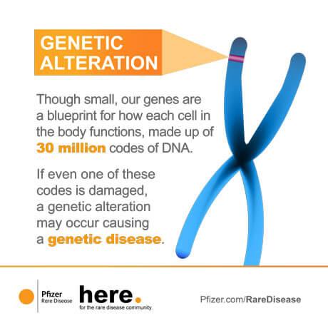GeneTherapy_Infograms-2.jpg